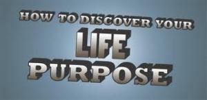 purpose 3