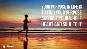purpose 7